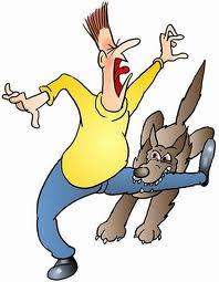responsabilità civile cani