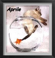 esposizioni feline aprile