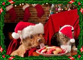 cani e gatti a tavola a Natale