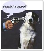 rapimento di cani con riscatto