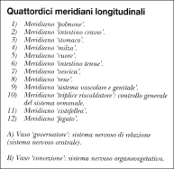 linee meridiane agopuntura cane
