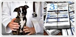 agevolazioni fiscali cani e gatti