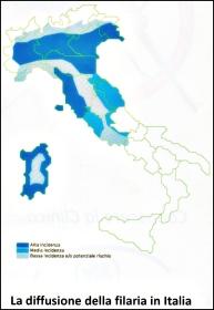 diffusione filariosi Italia167