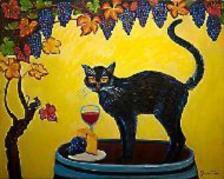 eventi gatti